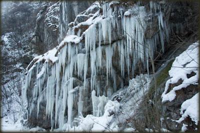 Ledenice na povratku kroz kanjon Resave
