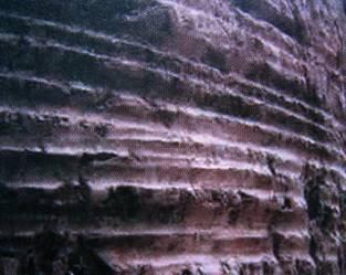 Трагови ужади у стенама