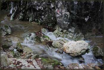 U kanjonu Kločanice (Suvaje)