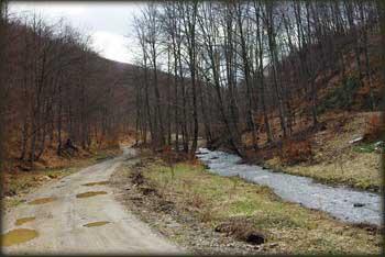Dolina Kločanice