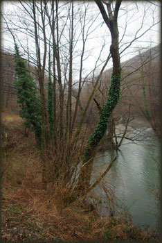 Mlava u Gornjačkoj klisuri
