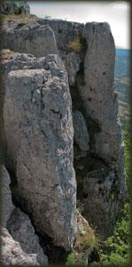 Tupižničke vertikale 1
