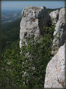 Tupižničke vertikale 2