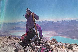 Prizor koji osvaja: pogled sa najvišeg vulkana na svetu, Ohos del Salada, pada na divlje planinske predele i smaragdno zelena slana jezera