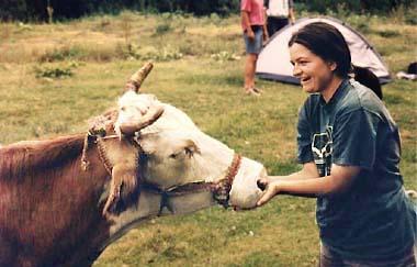 Nikoleta i krava (M)