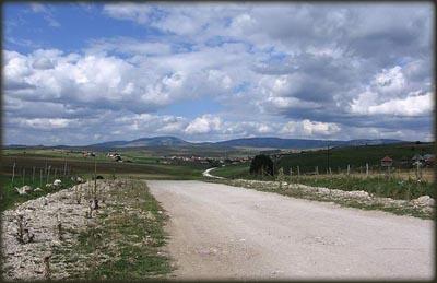 Severni deo Pešterske visoravni, nadomak planine Golije