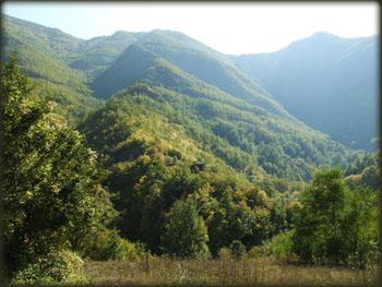 Dolina Toplodolske reke, na putu ka Zavojskom jezeru