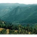 Jeste li videli nekad čuveni most na Đurđevića Tari?